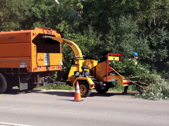 Commercial Tree Services-Miami FL Tree Trimming and Stump Grinding Services-We Offer Tree Trimming Services, Tree Removal, Tree Pruning, Tree Cutting, Residential and Commercial Tree Trimming Services, Storm Damage, Emergency Tree Removal, Land Clearing, Tree Companies, Tree Care Service, Stump Grinding, and we're the Best Tree Trimming Company Near You Guaranteed!