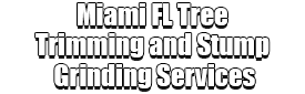 Miami FL Tree Trimming and Stump Grinding Services Logo-We Offer Tree Trimming Services, Tree Removal, Tree Pruning, Tree Cutting, Residential and Commercial Tree Trimming Services, Storm Damage, Emergency Tree Removal, Land Clearing, Tree Companies, Tree Care Service, Stump Grinding, and we're the Best Tree Trimming Company Near You Guaranteed!